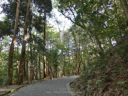 171229-月読宮 (3)