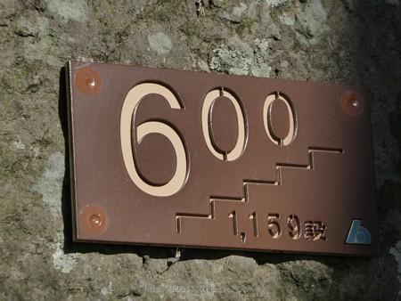 180110-久能山東照宮 (28)