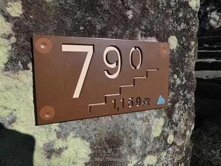 180110-久能山東照宮 (42)