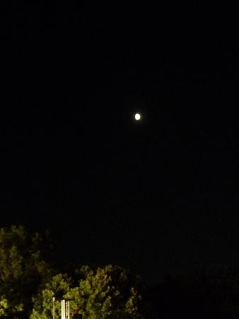 090830-ヤッサステージ 夜 (7)