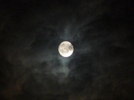090903-お月さん (2)
