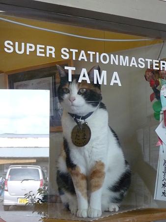 090828-貴志駅とたま駅長 (7)