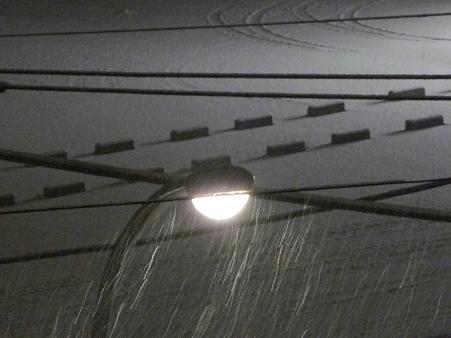 120211-雪降ってきた-2 (4)