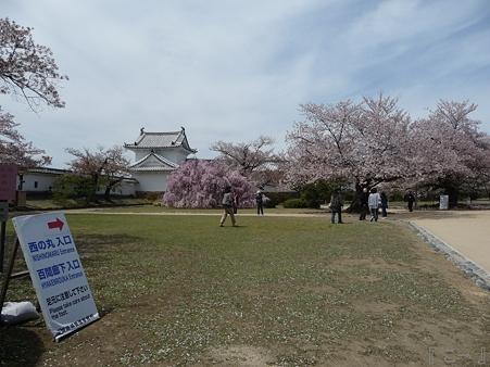 110417-姫路城 (190)