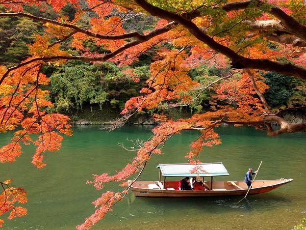 2016秋 嵐山 保津川