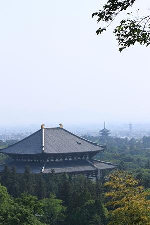 若草山からの大仏殿