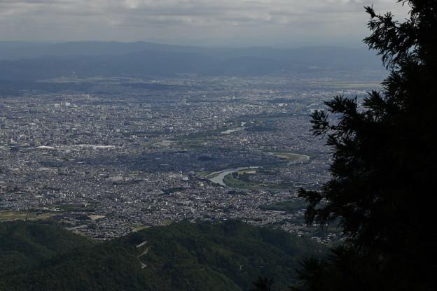 京都・愛宕山20