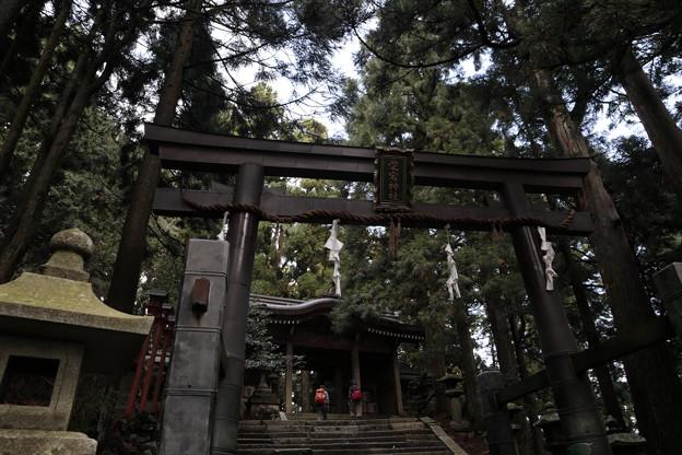 京都・愛宕山15