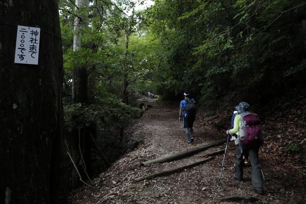 京都・愛宕山09