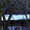 Photos: 湖東のみち11
