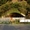 野島の掩体壕東側