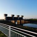写真: 福川の水門