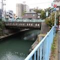 写真: 浜川橋(涙橋)