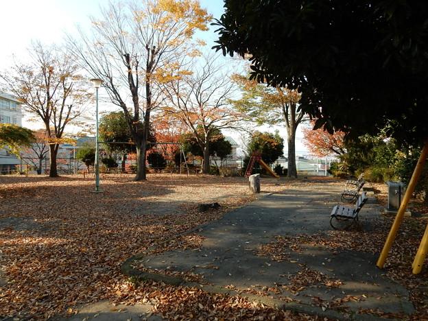 三角点公園