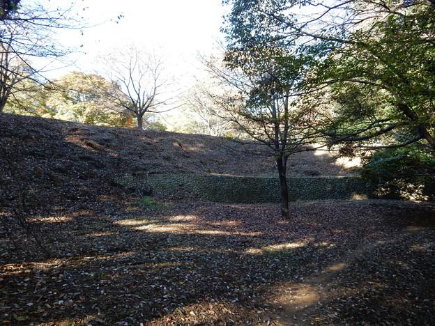小田野城跡