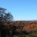 狭山富士富士山
