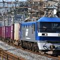 写真: 貨物列車 (EF210-7)