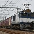 貨物列車 (EF641015)