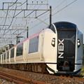 特急 成田エクスプレス38号