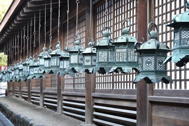 春日大社の灯篭