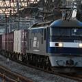 写真: 貨物列車 (EF210-112)