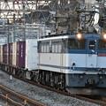 写真: 貨物列車 (EF652097)