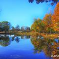 小さな池の休日
