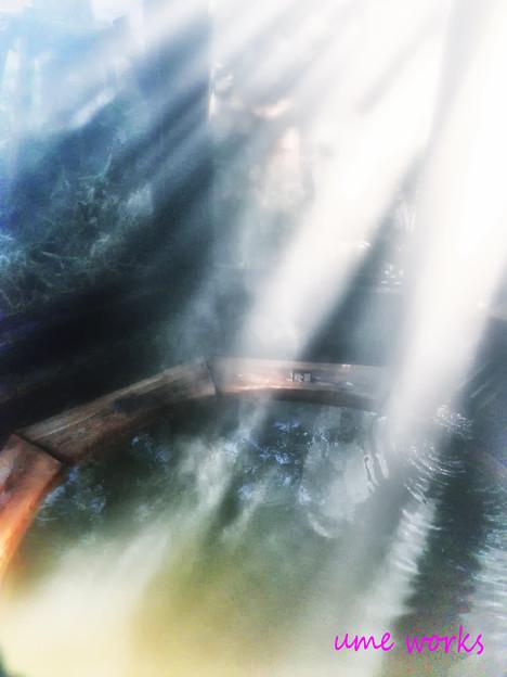 写真: 木漏れ日の湯