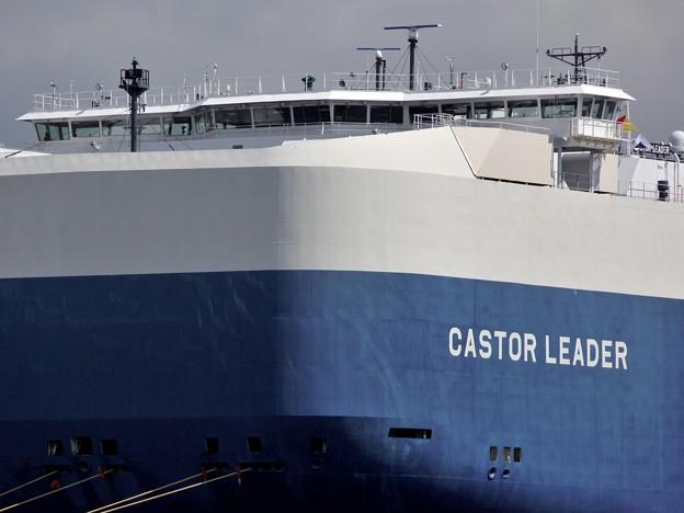 写真: CASTOR LEADER -10