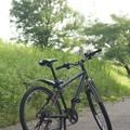 写真: サイクリング
