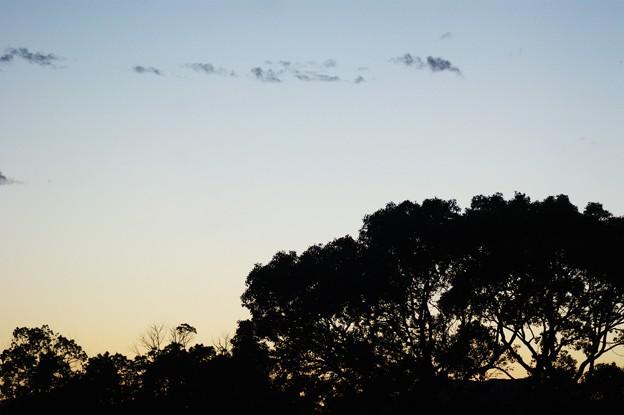 写真: 夕暮れ時
