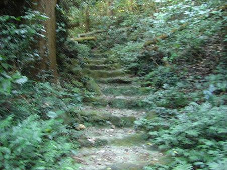 とりあえずな階段