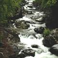 新緑の照葉峡渓流14