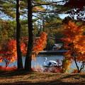 蓼科湖の紅葉湖