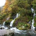 吐竜の滝全貌
