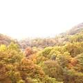 内山峡の紅葉2