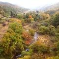 内山峡の紅葉3