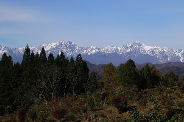 紅葉と北アルプスの雪山