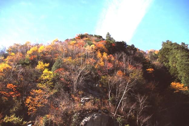 高瀬渓谷の紅葉6