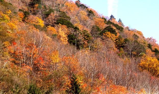 高瀬渓谷の紅葉8