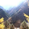 高瀬渓谷の紅葉9