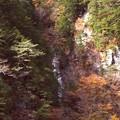 高瀬渓谷の紅葉10