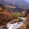高瀬渓谷の紅葉12