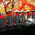 笠地蔵の紅葉