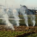 畑の焚き火