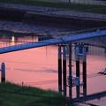 写真: 朝の水道橋