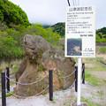 写真: 山津波