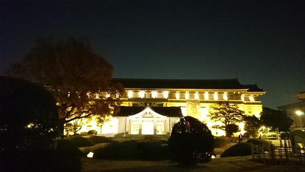 上野のライトアップ? その3