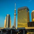 写真: 淺草附近橋