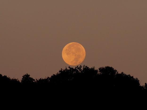 写真: 沈む満月